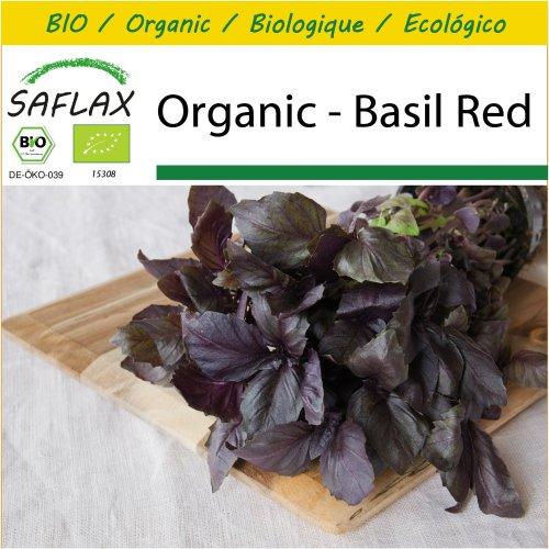 SAFLAX Potting Set - Organic - Basil Red - 400 certified organic seeds  - Ocimum