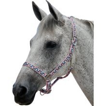 Roma Poly Spotted Headcollar