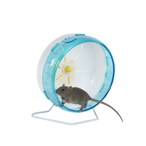 Pet Ting Premium Silent Spinners for Mice Hamster Gerbil Rats Etc. (22cm)