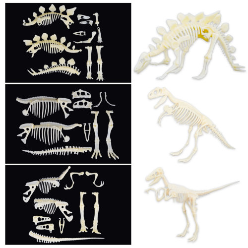 deAO Set of 3 Dinosaur Skeleton Figures to Assemble Toy for Children Educational Simulated Dinosaur Bones Set (Stegosaurus, T-Rex, Velociraptor)