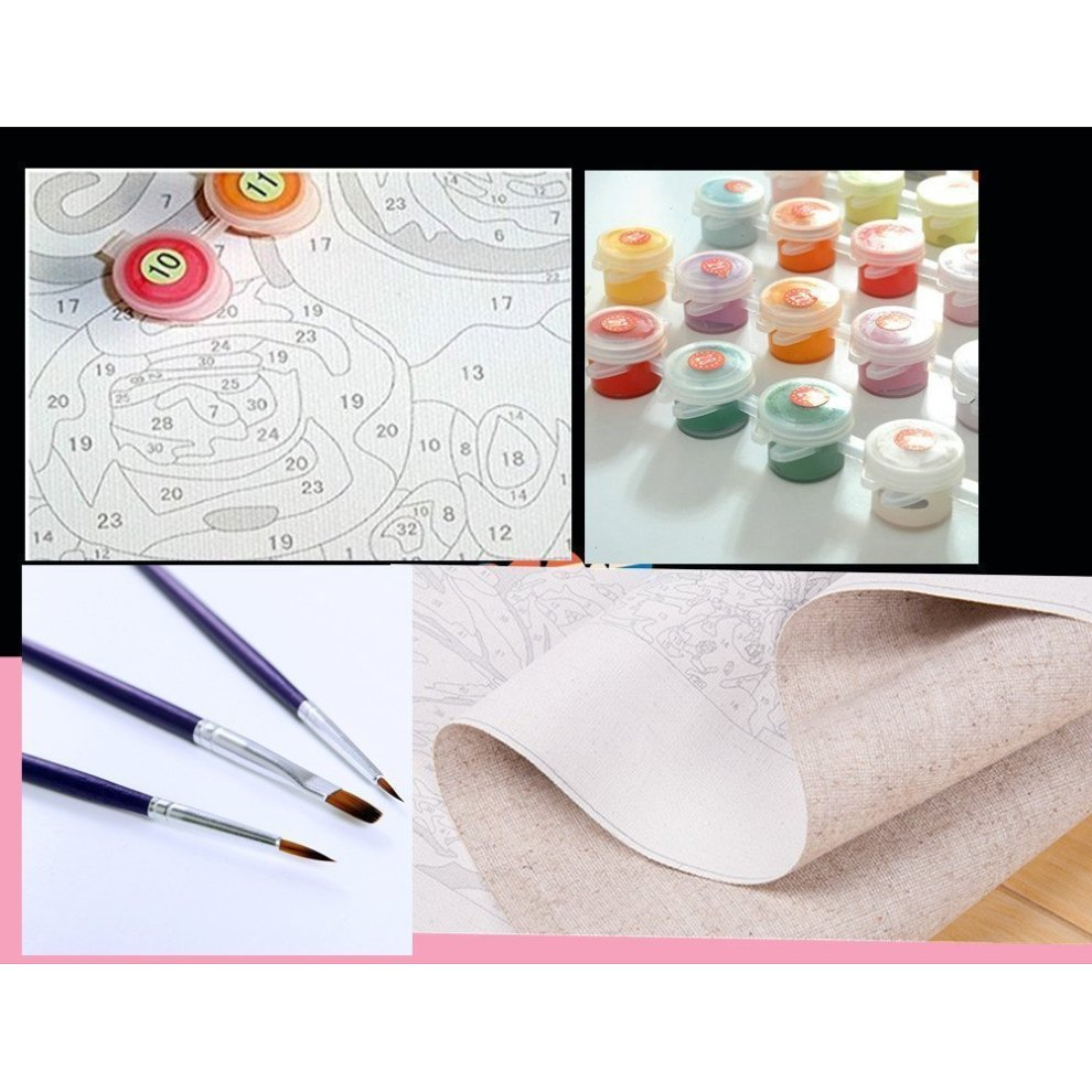 14e5e9a1c ... Diy Oil Painting, Paint By Number Home Decor Wall Pic Value Gift. >