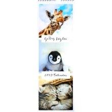 2019 Gallery 41 Animals Slim Wall Calendar Christmas Birthday Gift Cute Wild Cats Dogs Birds Panda Bear Monkey