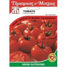 Thompson & Morgan - Vegetables - Tomato Ferline F1 Hybrid - 15 Seed