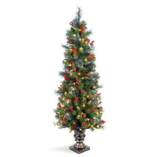 National Tree CW7-306-50 5 ft. Crestwood Spruce Entrance Tree