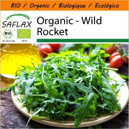 SAFLAX Garden in the Bag - Organic - Wild Rocket - 1500 certified organic seeds  - Diplotaxis