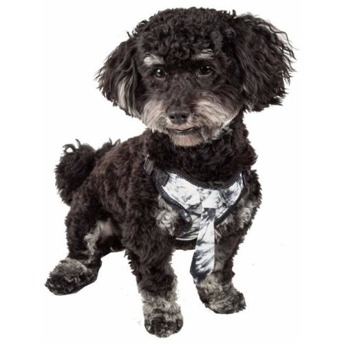 Pet Life HA50BKXS Bonatied Mesh Reversible & Breathable Adjustable Dog Harness with Designer Neck Tie, Black & White - Extra Small