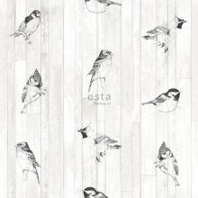 chalk printed non woven wallpaper pen drawn birds on wooden planks from reclaimed vintage wood Black and matt white