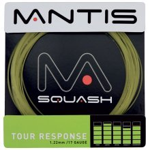 10m 17g Natural Mantis Tour Response Squash String Set - & Badminton Racket - Mantis Natural Tour Response 17g String Set Squash & Badminton Racket