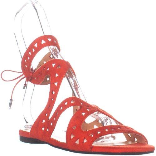 Daya by Zendaya Stella Flat Sandals, Red Micro, 5 UK