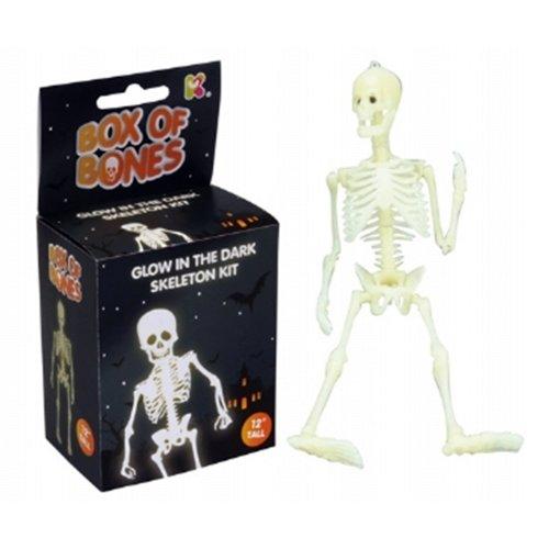 """Glow in the dark skeleton kit 12"""" Box of Bones"""
