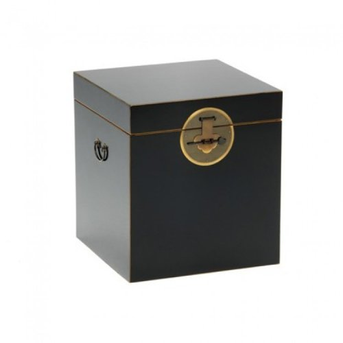Nine Schools Oriental Furniture Qing Black and Gilt Trunk