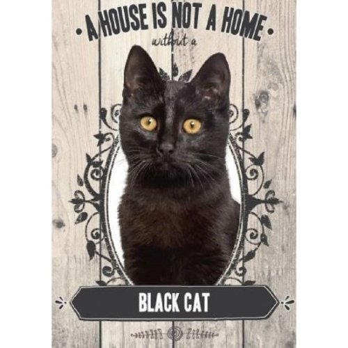 Black Cat A House Is Not A Home Metal Sign