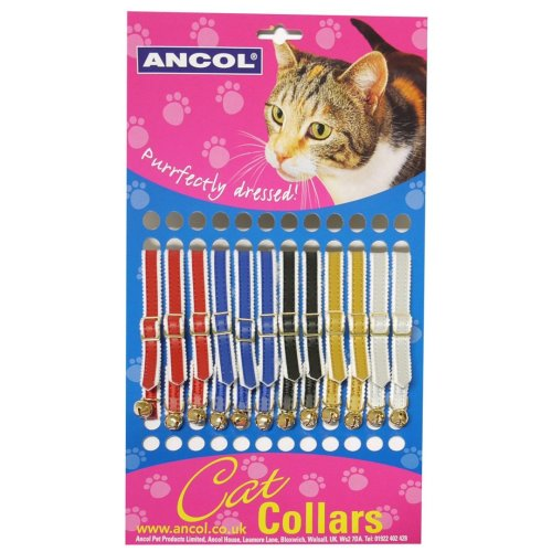 Safety Buckle Cat Collar Standard Assorted (Pack of 12)