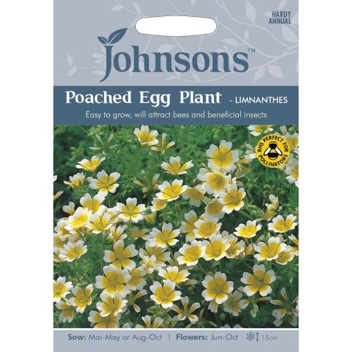 Johnsons Seeds - Pictorial Pack - Flower - Poached Egg Plant - Limnanthes - 100 Seeds