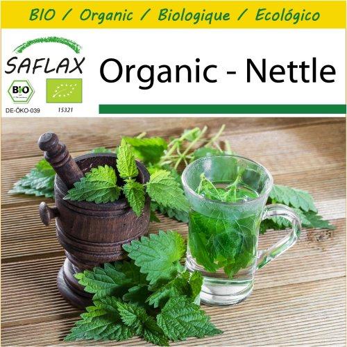 SAFLAX Potting Set - Organic - Nettle - 2000 certified organic seeds  - Urtica