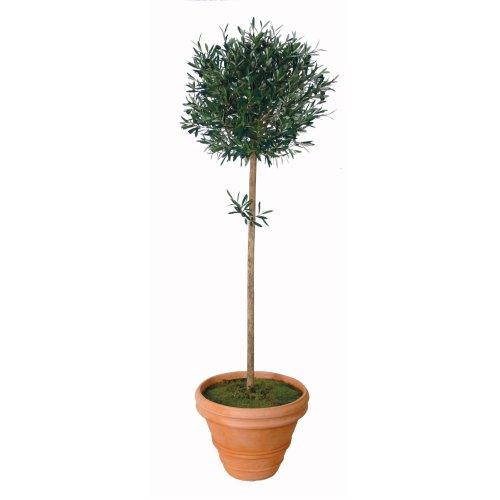 Artificial Silk Olive Ball Tree - 90cm, Green
