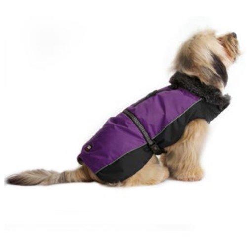 Dog Gone Smart Aspen Jackets Purple / Black 12''