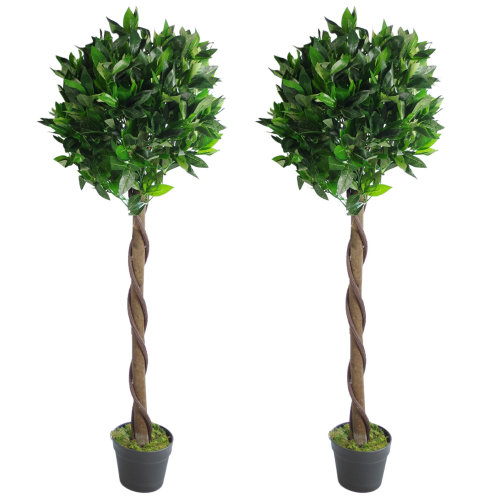 Pair of 120cm (4ft) Twisted Stem Artificial Topiary Bay Laurel Ball Trees