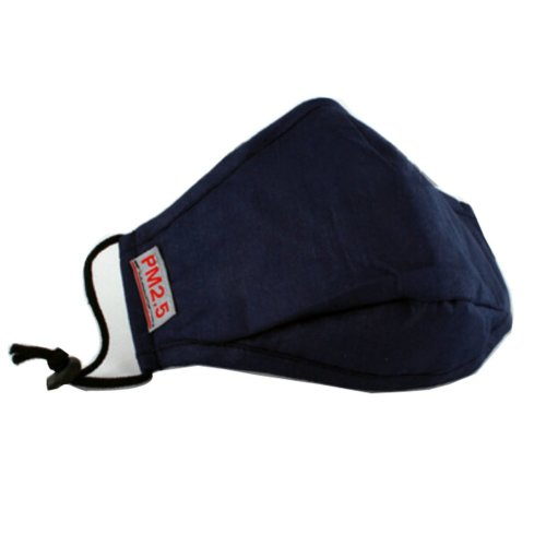 PM2.5 Adults's Mask For Anti-smog Of N95 Activated Carbon (Navy Blue)