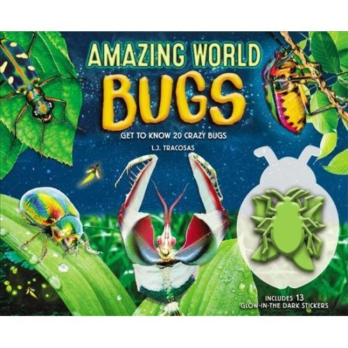 Amazing World: Bugs